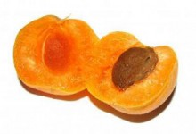 the apricot appraisal